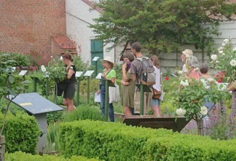 Visite du jardin «Plantes de sorcières» du 28/10 annulée