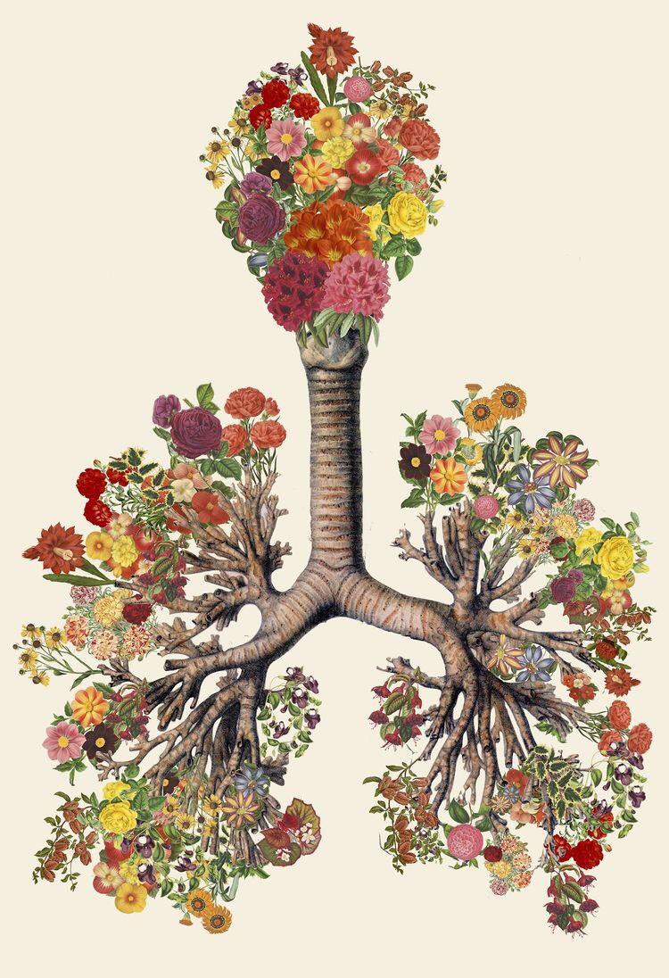Conférence « Approche de l'asthme en médecine traditionnelle » le 15/07 à 17h