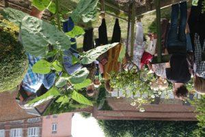 Visite des jardins : la symbolique des fleurs et du végétal (28/06) COMPLET