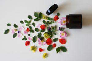 Atelier : Les fleurs de beauté et de santé le 23 août à 14h30 COMPLET
