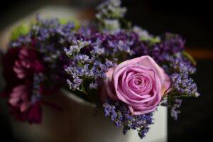 Samedi 21 et dimanche 22 août à 14 : les fleurs de beauté et de santé. PROMO LAST MINUTE